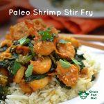 No Soy Stir Fry (paleo and gluten free)