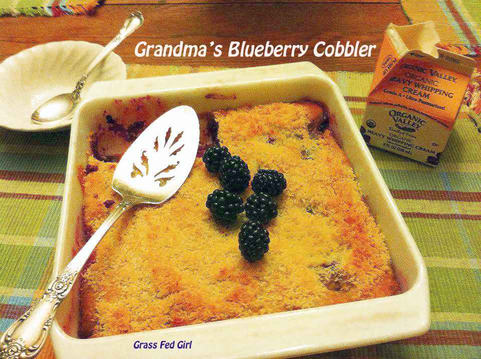 cobbler blackberry grain free