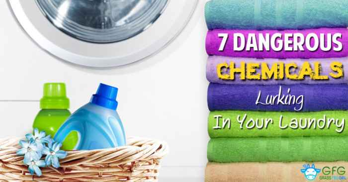 Dangerous Chemicals In Laundry Detergent