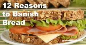 Suicide by Sandwich? 12 Reasons to Banish Bread