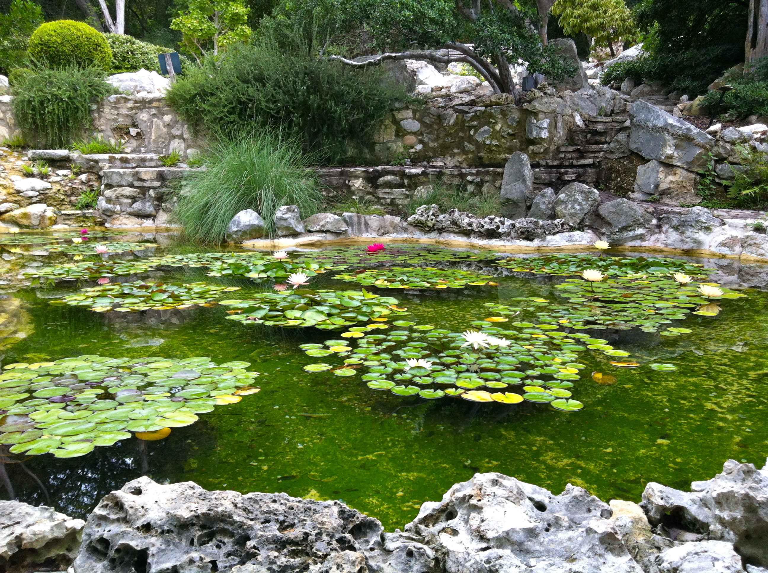 5 Healthy Paleo Travel Tips Austin Tx Grass Fed Girl