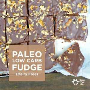 Paleo Low Carb Fudge (dairy free)