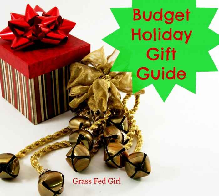 Budget Holiday Gift Guide