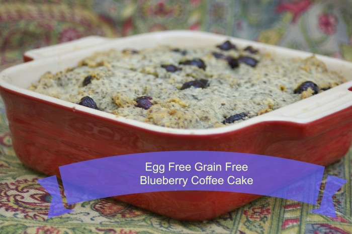 Egg and Grain Free Blueberry Coffee Cake
