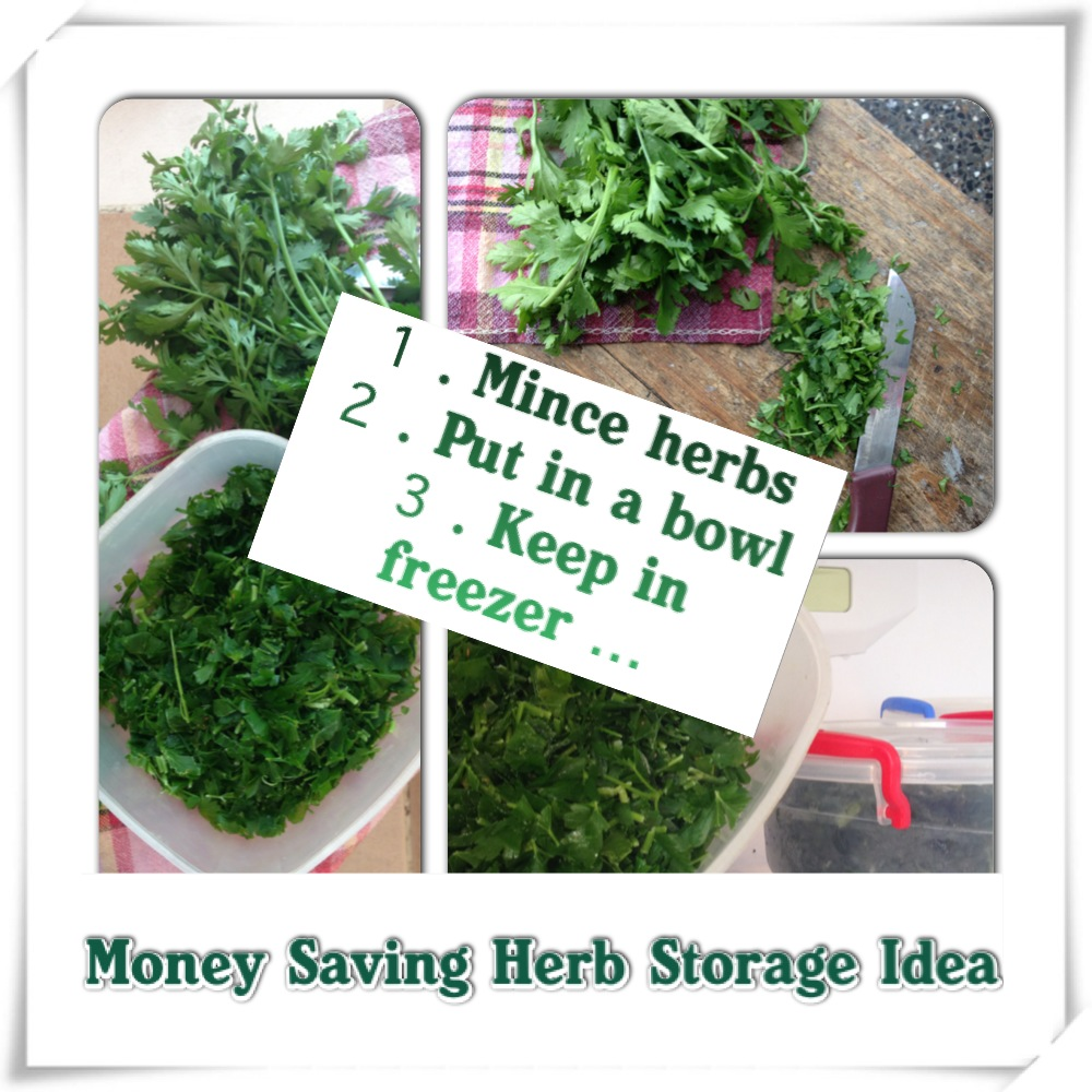 Money Saving Idea for Using and Storing Fresh Herbs