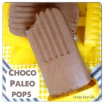Easy Dairy Free Paleo Chocolate Popsicles
