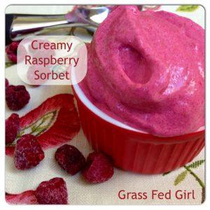 Easy Paleo Raspberry Sorbet (Dairy Free, Low Carb)