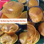 No Bake Egg Free Paleo Pumpkin Muffins