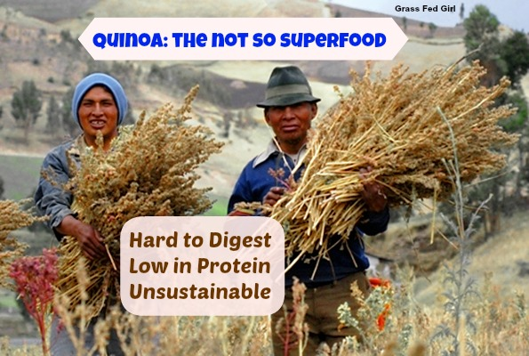 quinoa: the not so superfood