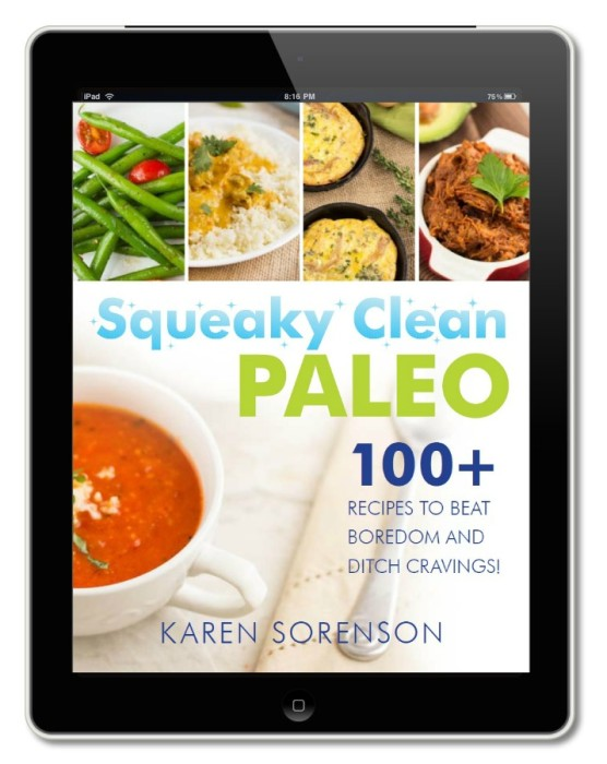 Book review squeaky clean paleo by karen sorenson of living low squeaky clean paleo forumfinder