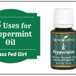 25 Uses for All Natural Peppermint Essential Oil for Body Care