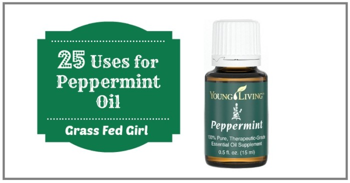 Peppermint Essential Oil for Body Care