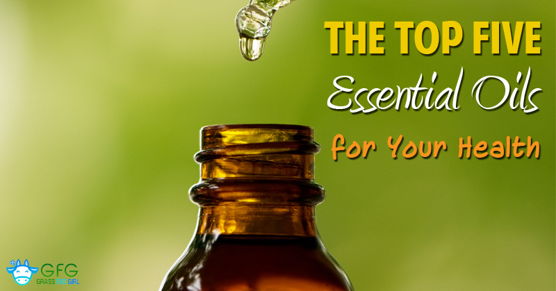 The-Top-Five-Essential-Oils-for-Your-Health-wordpress