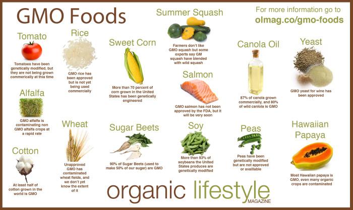 gmo foods info graphic