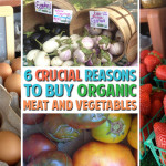 6 Crucial Reasons to Buy Healthy Organic Meat and Vegetables at the Store
