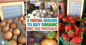 wordpress-6-Crucial-Reasons-to-Buy-Organic-Meat-and-Vegetables