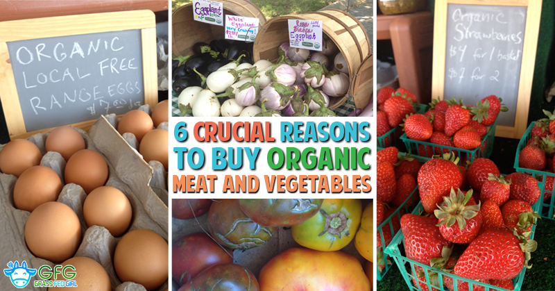 6 Crucial Reasons to Buy Healthy Organic Meat and Vegetables