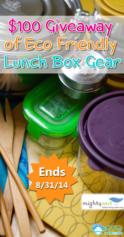 pinterest-25-Gluten-Free-Lunch-Box-Ideas-giveaway