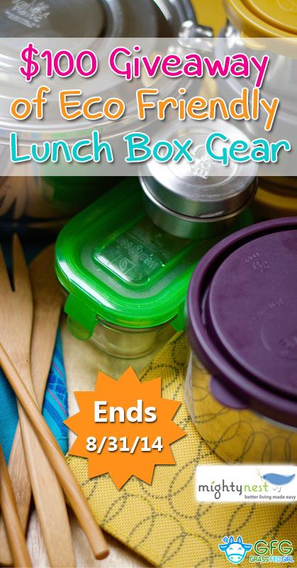 pinterest-25-Gluten-Free-Lunch-Box-Ideas-giveaway