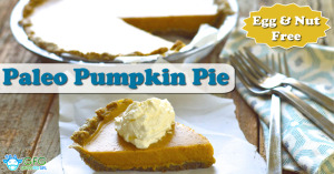 Egg and Nut Free Paleo Pumpkin Pie