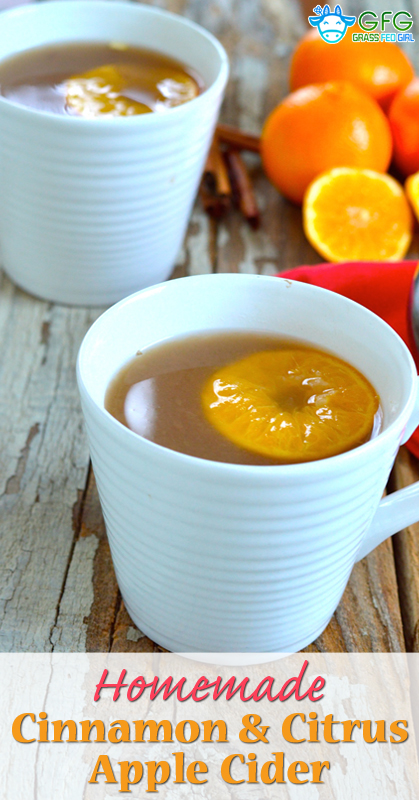 pinterest-Homemade-Cinnamon-and-Citrus-Apple-Cider