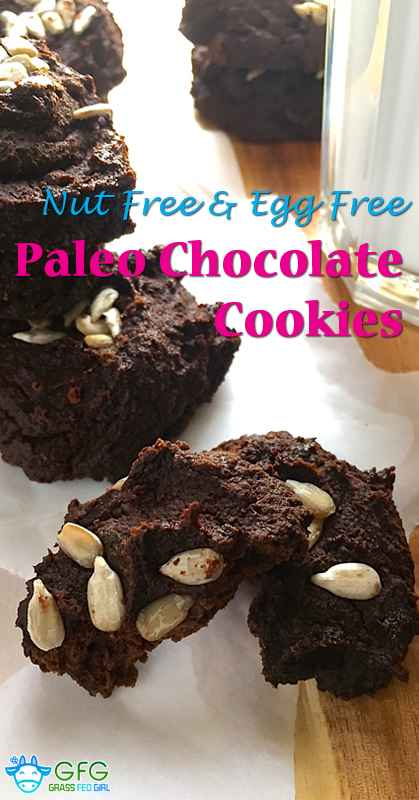 Nut Free Paleo Chocolate Cookie
