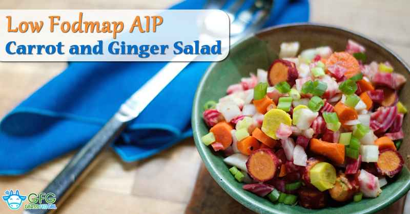 wordpress-Low-Fodmap-AIP-Carrot-and-Ginger-Salad