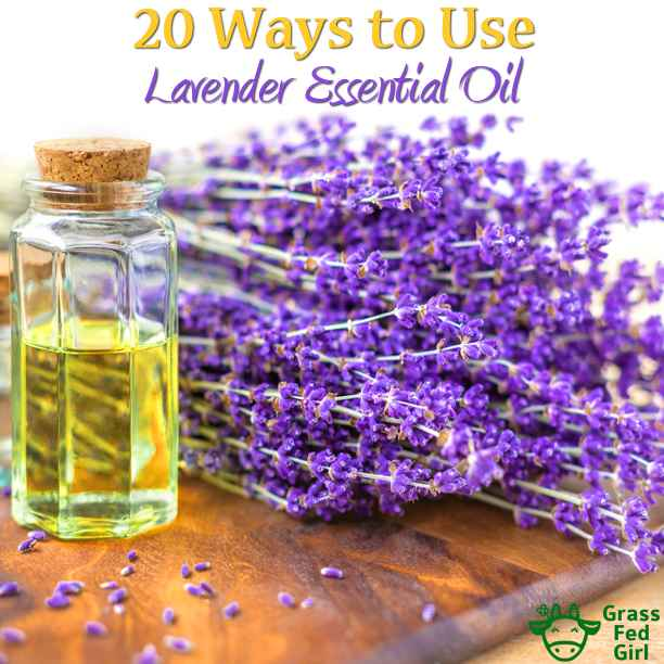 Lavender-Essential-Oils