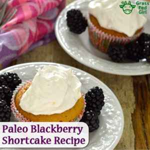 instagram-Paleo-Blackberry-Shortcake-Recipe