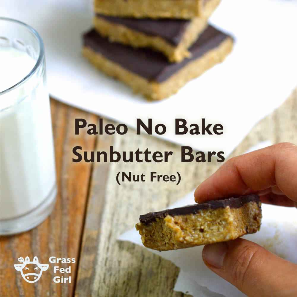 No Bake Keto Sunbutter Bar Recipe