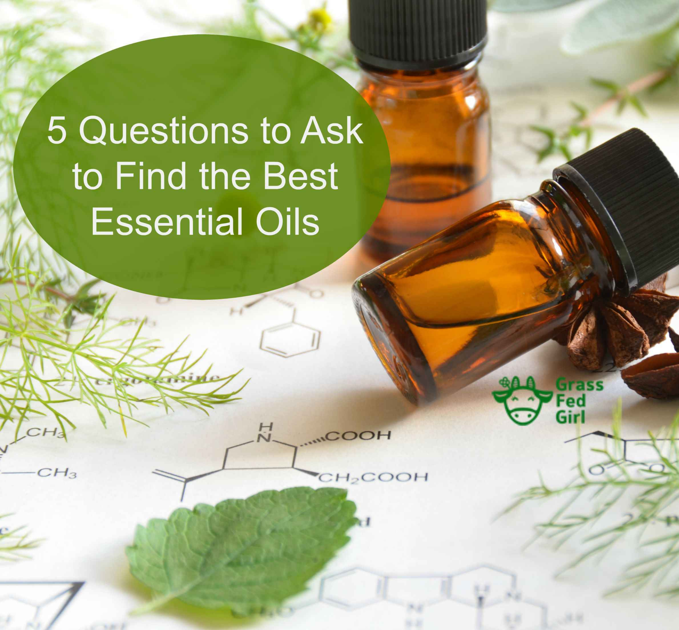 square essential oils 5 oils find the best