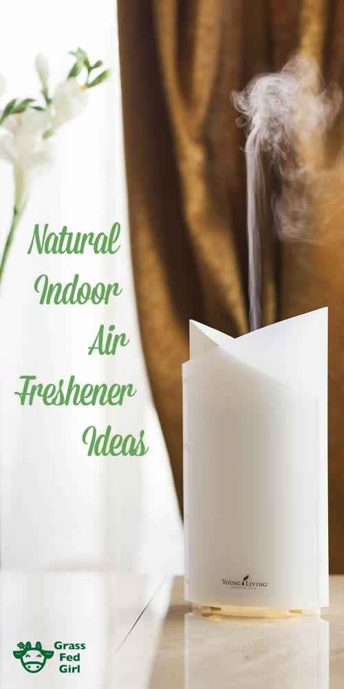 indoor_air_freshener_long_f