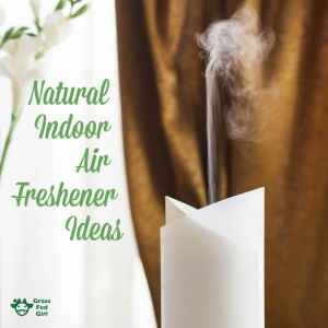Natural Freshener Ideas for Indoor Air Pollution and Air Quality