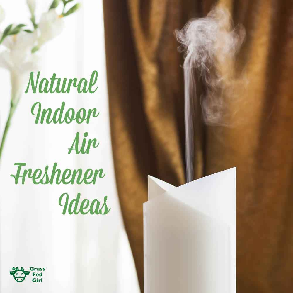 indoor_air_freshener_sq_f