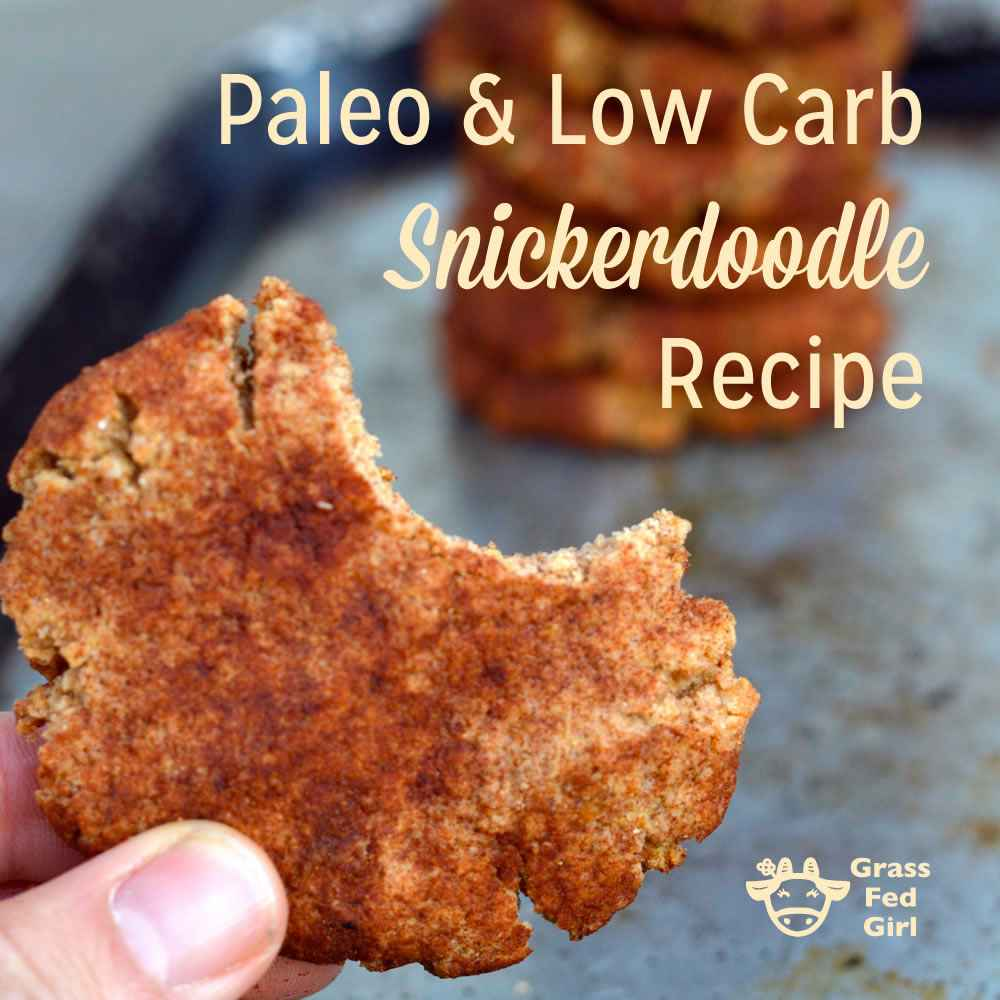 Paleo And Low Carb Snickerdoodle Recipe (gluten Free And