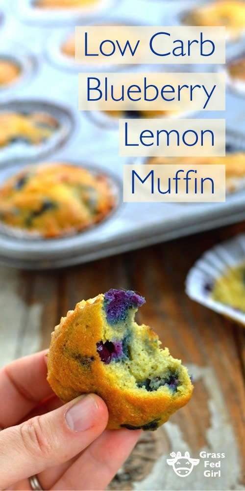 blueberry_lemon_muffin_long