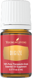 Digize-126x300