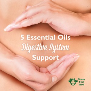 5 Essential Oils for Digestive System Support