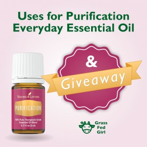 Everyday Essential Oils: Purification Uses and Giveaway