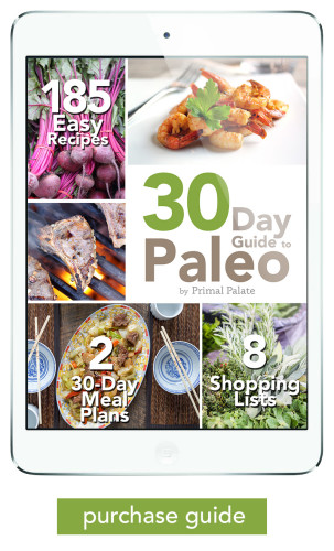 30-Day-Guide-to-Paleo-meal-Plan-ipad-low-res-purchase-guide-303x500