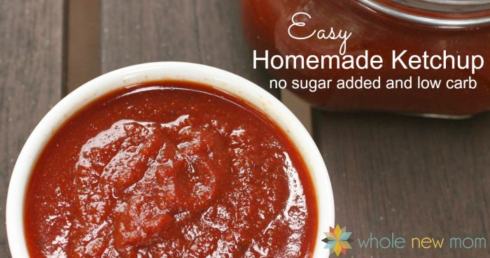 Easy low carb and keto homemade ketchup Recipe