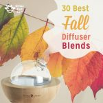 30 Best Fall Essential Oil Diffuser Blends