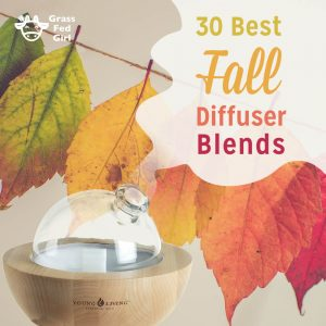 30 Best Fall Essential Oil Diffuser Blends