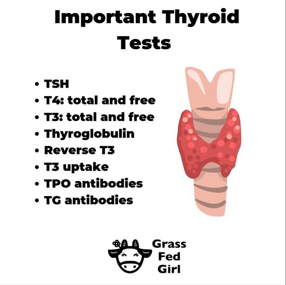 Which thyroid tests to ask for at the doctor?